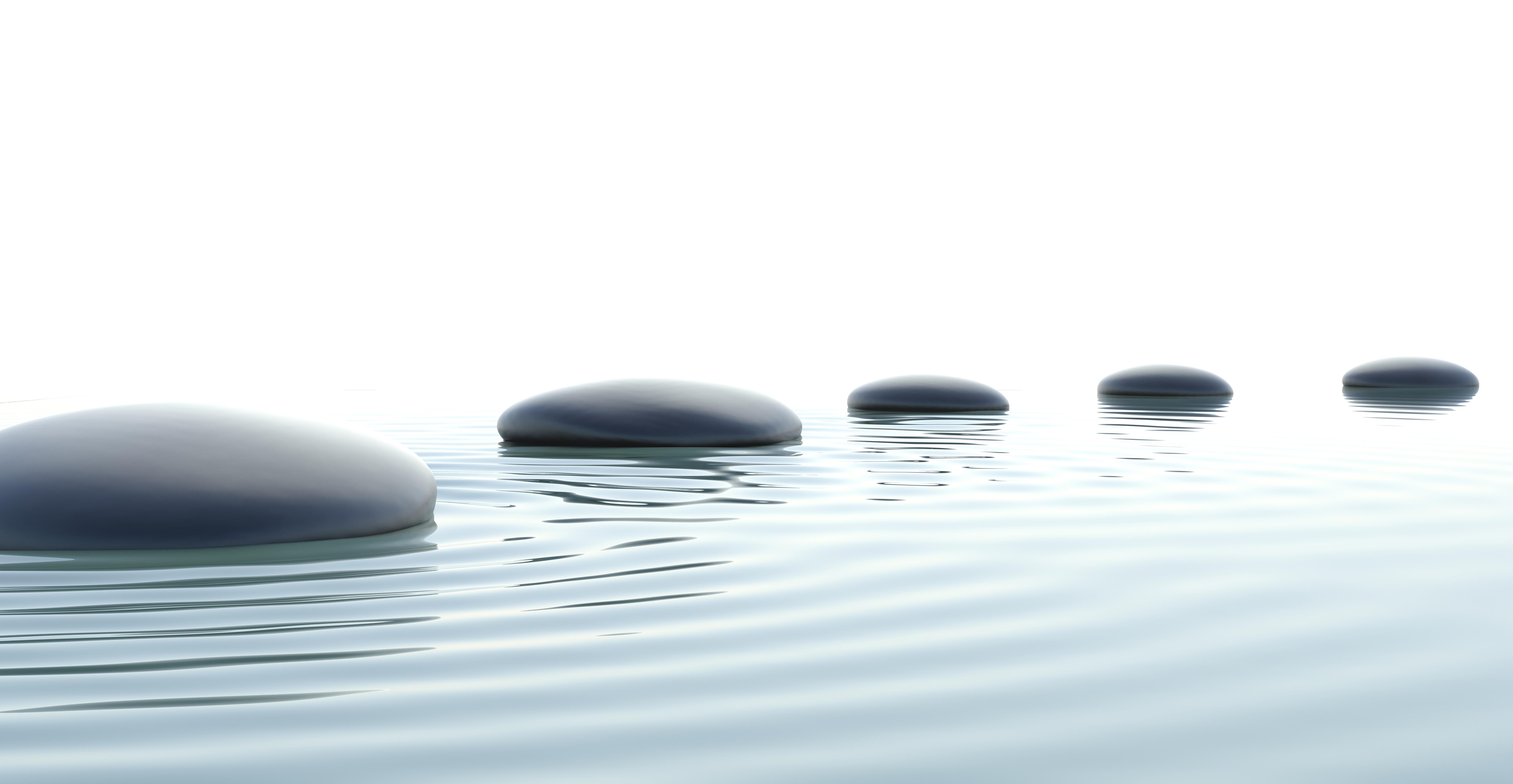 Cultivating a successful mindset