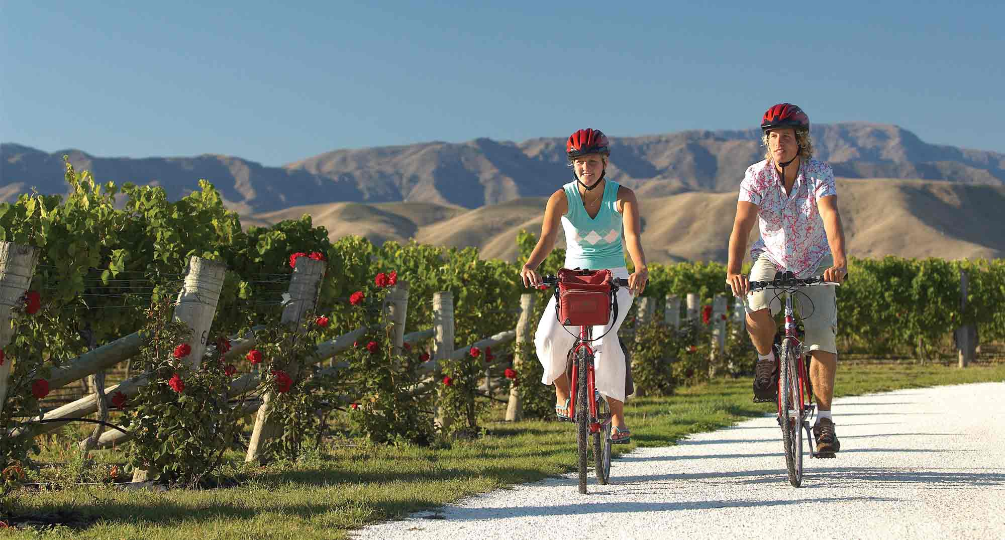 RELAX & REVIVE: Tour De Vines